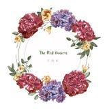 Carte de voeux avec floral rouge dans le jardin, illustration, label de cercle Photographie stock