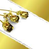 Carte de voeux avec les roses d'or et le papier déchiré Image stock