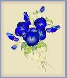 Carte de voeux avec un bouquet des pensées. Images libres de droits