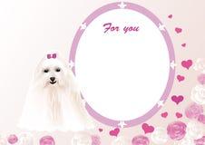 Carte de voeux avec un petit chien d'appartement Photo stock
