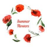 Carte de voeux d'aquarelle avec les fleurs rouges Images libres de droits