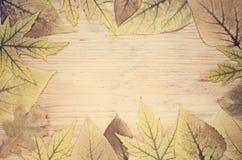 Carte de voeux d'automne avec des feuilles la trame d'automne part du jaune Photographie stock