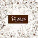 Carte de voeux d'ensemble de sépia de brun de fleur de magnolia sur le fond beige illustration stock