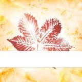 Carte de voeux de feuilles d'automne Images libres de droits