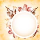 Carte de voeux de feuilles d'automne Photo stock