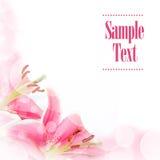 Carte de voeux de fleur Images stock