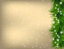 Carte de voeux de Noël avec des brindilles et des flocons de neige de sapin Photos libres de droits