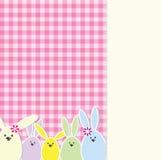 Carte de lapin de Pâques Photos libres de droits