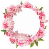 Carte de voeux florale d'aquarelle Bouquet floral d'aquarelle Trame décorative florale D'isolement sur le fond blanc Images libres de droits