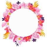 Carte de voeux florale d'aquarelle Bouquet floral d'aquarelle Trame décorative florale D'isolement sur le fond blanc Images stock