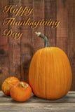 Carte de voeux heureuse de jour de thanksgiving Images libres de droits