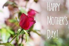 Carte de voeux heureuse de jour du ` s de mère Photo stock