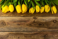 Carte de voeux jaune de rangée de tulipes Image libre de droits
