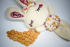 Carte de voeux de jour du `s de Valentine La tête d'un lapin et d'un coeur bourrés Photographie stock