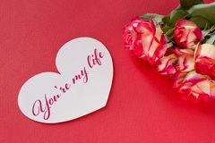 Carte de voeux de jour de valentines avec les coeurs et le lettrage de roses Photographie stock