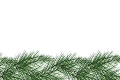 Carte de voeux de Joyeux Noël et de bonne année avec des brindilles de sapin de décor de Chrirstmas Illustration de couleurs blan Photographie stock libre de droits