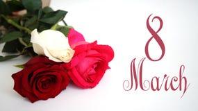 Carte de voeux, rose de blanc, rose de rouge, rose de rose sur le fond blanc d'isolement Image stock