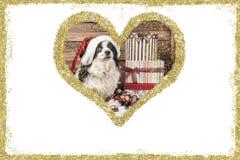 Carte de voeux de vintage de chien de Noël Image stock
