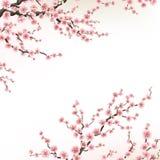 Carte dell'invito con un fiore sakura ENV 10 illustrazione vettoriale