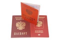 Carte di identificazione russe Immagini Stock