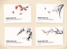 Carte di regalo Fotografia Stock