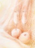 carte douce d'amour de mariage de couples Photos libres de droits