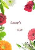 Carte florale. Photos libres de droits