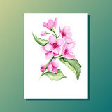 Carte florale Photos stock