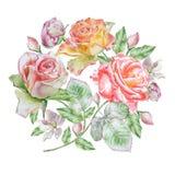 Carte florale avec des fleurs Rose Illustration d'aquarelle Photographie stock libre de droits