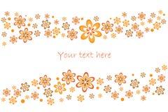 Carte florale de source Photo stock
