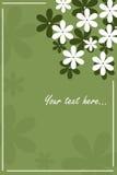 Carte florale - vert Image libre de droits