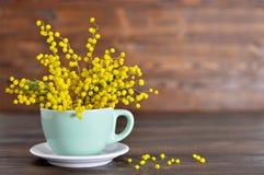 Carte heureuse de jour de mères avec la mimosa dans la tasse Photographie stock