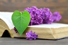 Carte heureuse de jour de mères : Fleur lilas et feuille en forme de coeur Photo libre de droits
