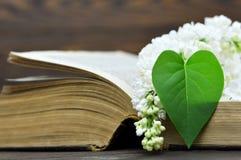 Carte heureuse de jour de mères : Fleur lilas et feuille en forme de coeur Photos libres de droits