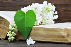 Carte heureuse de jour de mères : Fleur lilas et feuille en forme de coeur Photographie stock libre de droits