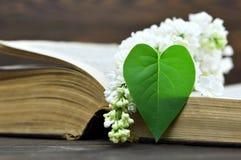 Carte heureuse de jour de pères : Fleur lilas blanche et feuille en forme de coeur Photo stock