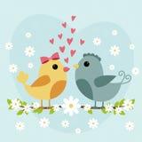 Carte heureuse de jour de valentines avec les couples mignons d'oiseau Photos libres de droits