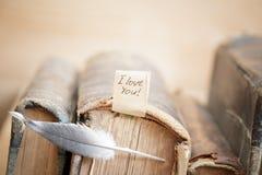 Carte heureuse de jour de valentines d'AMOUR Photos stock