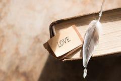 Carte heureuse de jour de valentines d'AMOUR Images stock