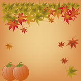 Carte heureuse de thanksgiving Photos stock