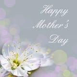Carte heureuse du jour de mère Images libres de droits