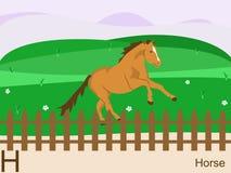 Carte instantanée d'alphabet animal, H pour le cheval Images libres de droits
