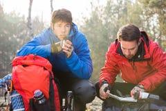 Carte masculine de lecture de randonneur tandis qu'ami ayant le café dans la forêt Image stock