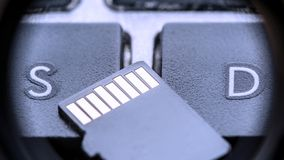Carte micro noire d'écart-type avec des contacts d'or sur la clé avec la lettre S et la lettre D photos libres de droits