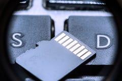 Carte micro noire d'écart-type avec des contacts d'or sur la clé avec la lettre S et la lettre D image libre de droits