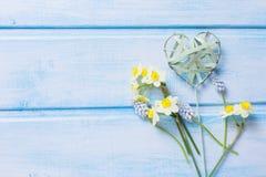 Carte postale avec des jonquilles, des muscaries et décoratif de fleurs fraîches Image stock
