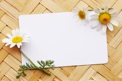 carte postale avec deux marguerites le long des bords du cadre photos stock image 31322363. Black Bedroom Furniture Sets. Home Design Ideas