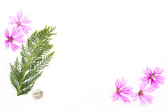 Carte postale avec l'endroit vide pour l'inscription du SM rose dispersé Images libres de droits
