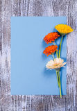 Carte postale avec la feuille et les fleurs de papier Image libre de droits