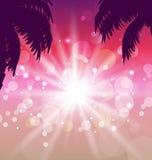 Carte postale avec la vue de coucher du soleil de bord de la mer avec le palmtree Images libres de droits